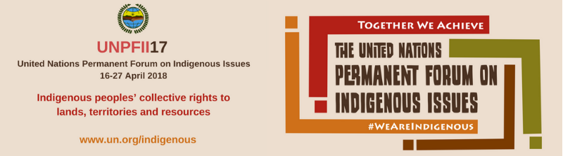 17th session of the UN Permanent Forum on Indigenous Issues (UNPFII17)